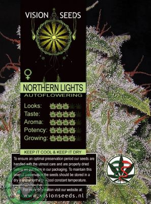 NORTHERN LIGHTS AUTO FEMINISIERT